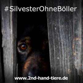 #SilvesterOhneBöller
